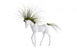 Small Walking Horse Planter