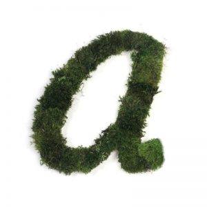 Moss Sign - By Letter - Cursive