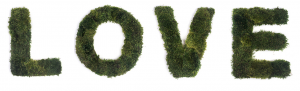 Moss love sign block letters