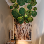 HOW A DECORATIVE MOSS BALL CAN UPGRADE ANY ROOM IN THE HOUSE