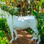 Unicorn Naming Competition: Plant the Future & Miami Beach Botanical Gardens Partnership